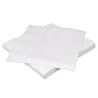 Fiesta White Lunch Napkin - 300x300mm 2 Ply (Pack 250)