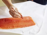 Fish & Seafood Accessories