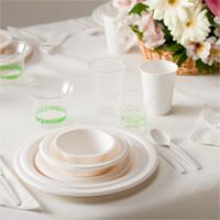 Disposable Cutlery & Tableware