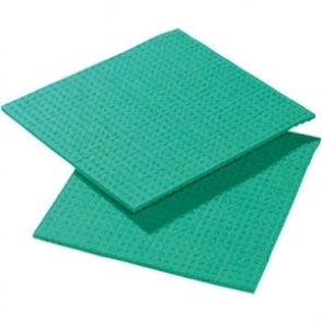 Spontex Spongyl Green (Pack of 10)