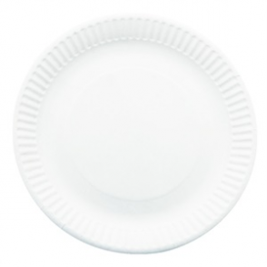 Paper Plates 9in (250pp)