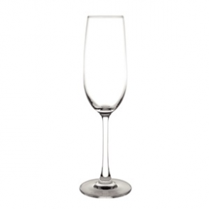 Olympia Modale Champagne Flutes 215ml (6PP)