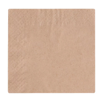 Compostable Cocktail Napkin 24cm 2-ply unbleached (Case 4000)