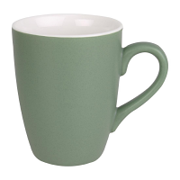 Olympia Matt Pastel Mug Green 320ml