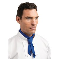 Blue Neckerchief